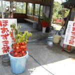 愛宕神社 七夕祭り結びの祭典と  ほおずき夏祭り開催のお知らせ